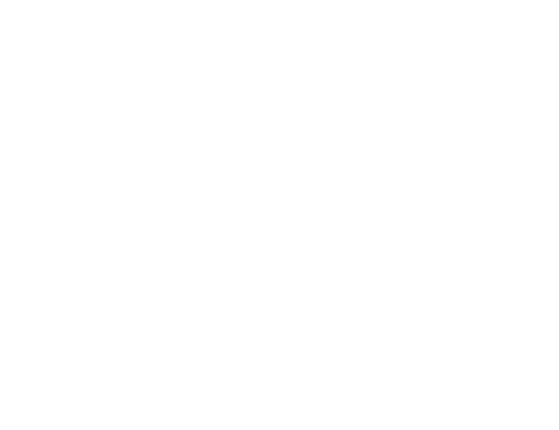 Person in a wheelchair icon