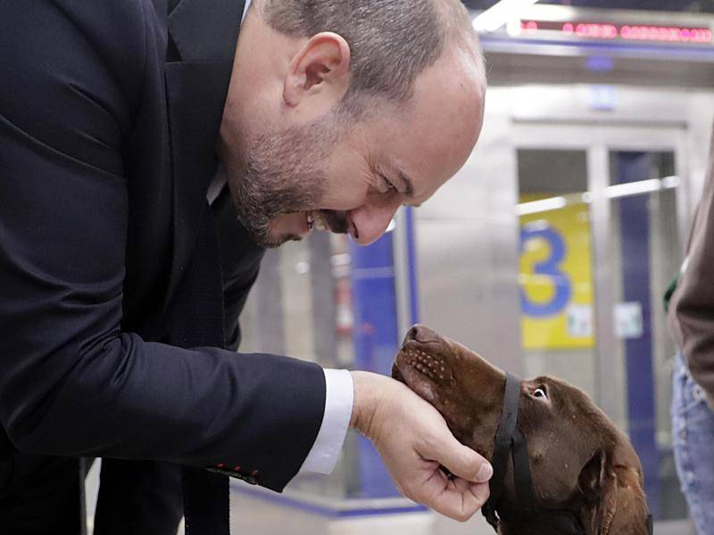 The initiative stems from the cooperation established between Metro Madrid and the animal protection group